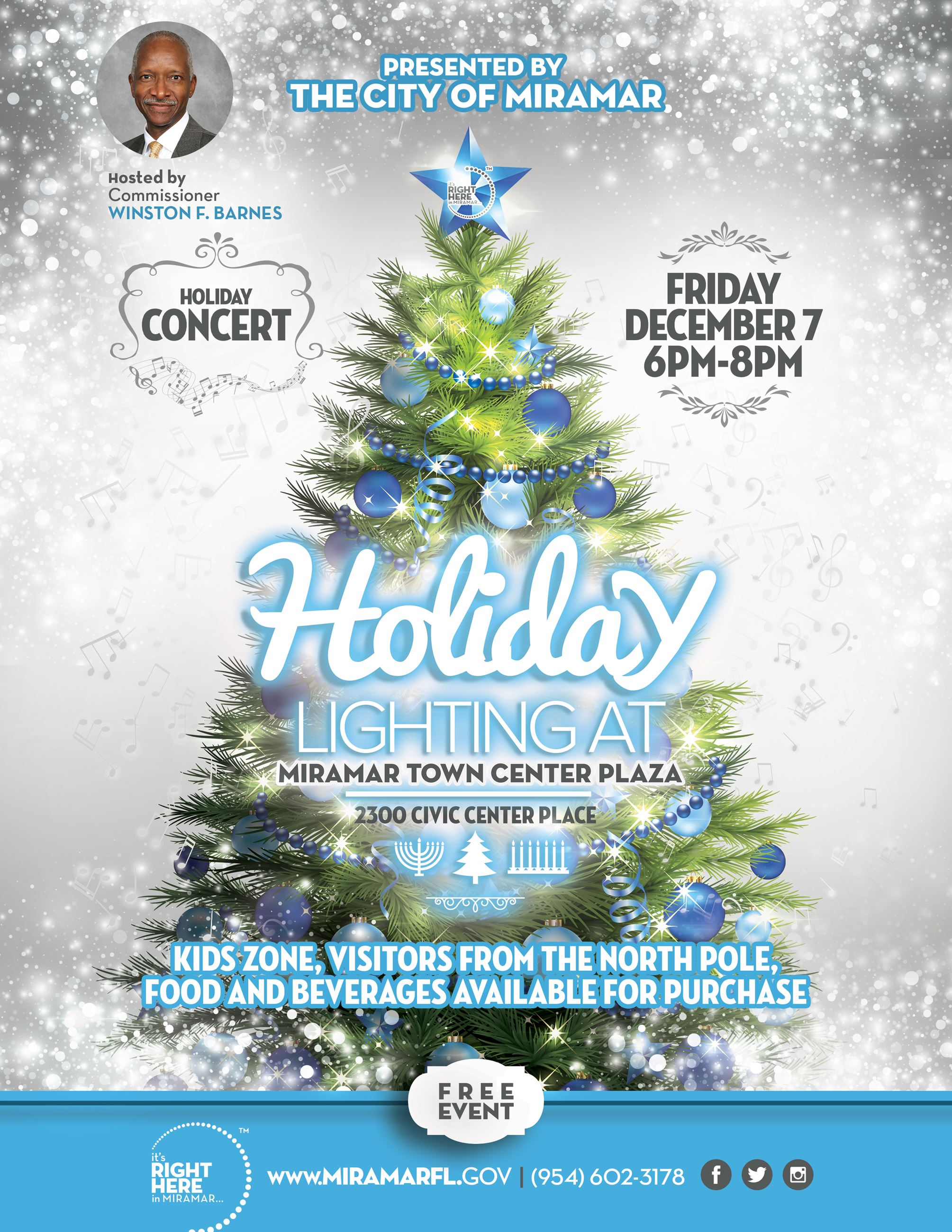 Holiday Lighting Flyer