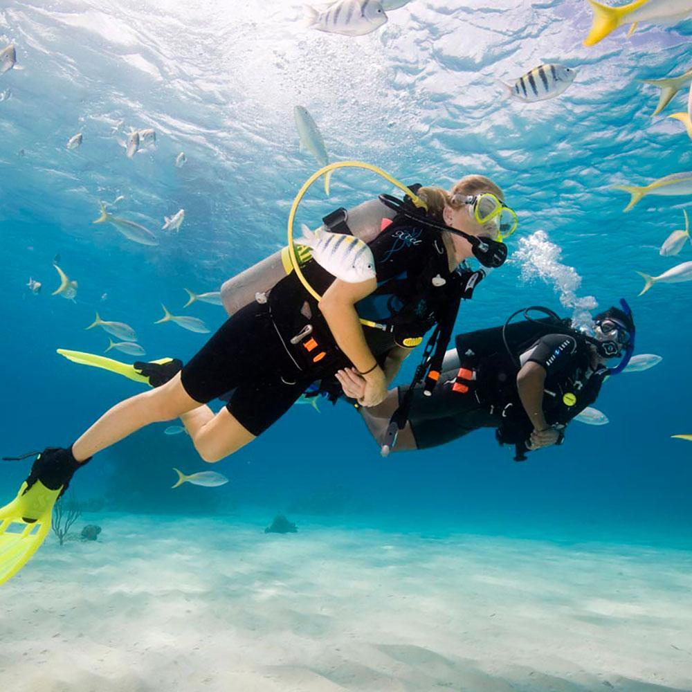 PADI Course - Learn to Dive