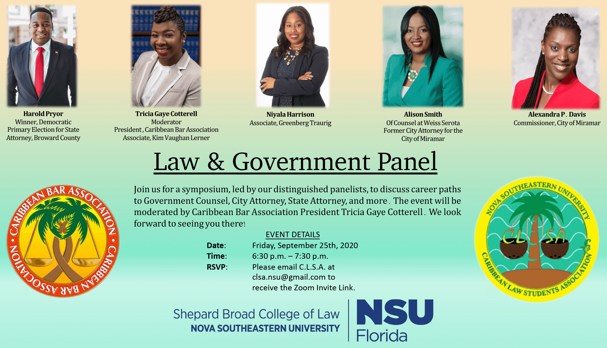 Law  Government Panel